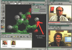 Screenshot of desktop video conferencing