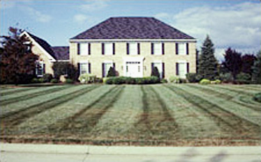 large two story traditional brick home with black shutters, garage on the left, and a large treeless grassy front yard with stripes mowed along the length