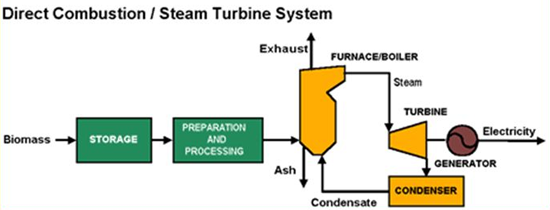 Illustration of how a direct combustion/steam turbine system operates. The biomass first goes into storage, then preparation and processing, and on to simultaneously create ash and exhaust. From there, the biomass becomes boiler fuel that produces steam to operate a steam turbine and generator to make electricity.