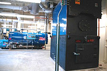 Photo of a biomass-fired boiler on the right and a Hurst natural gas-fired backup boiler on the left