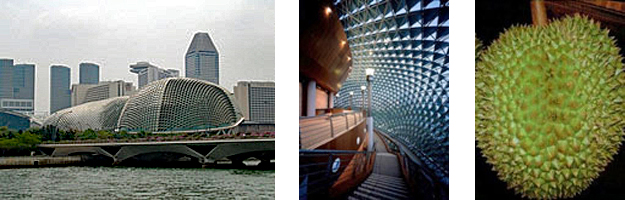 3 side-by-side images: left is the exterior view of the Esplanade Theater and commercial district in Singapore, center is the shaded interior of the Esplanade Theater where the wall surface is much like the Durian plant, and right is a close up image of the Durian plant