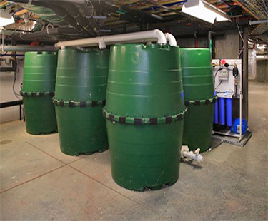 Two 1,000 gallon storage tanks located on either side of the Home Depot Smart Home collect rainwater from roof runoff