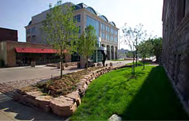Public plaza created between buildings-with grass on right side along the building spearated from the pedestran plaza by a short paver wall in which a planter was created