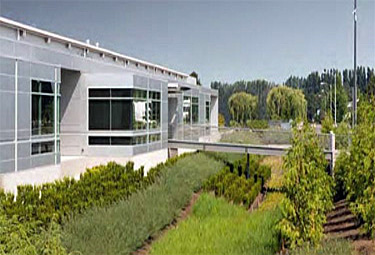 One story modern gray building surrounded by landscaping and bioswale