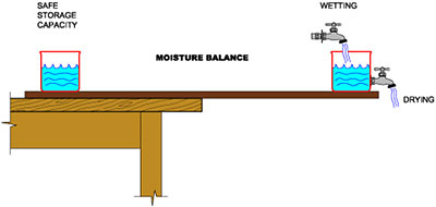 Moisture balance illustration