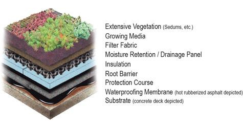 Isometric Detail Of Generic Extensive Green Roof On A Concrete Deck