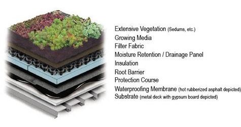 Isometric detail of generic extensive green roof on a steel deck