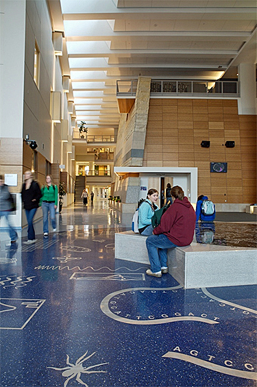 The two-story atrium in the Science Laboratory Center at Winona (Minn.) State University incorporates a stairway as well as a bridge for movement from one side of the building to the other. Multiple materials and colors add visual interest, and the artwork doubles as a teaching and communication tool.