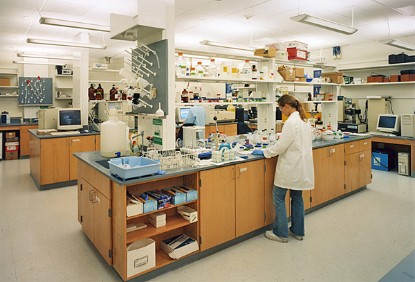 Laboratory design with wood casework