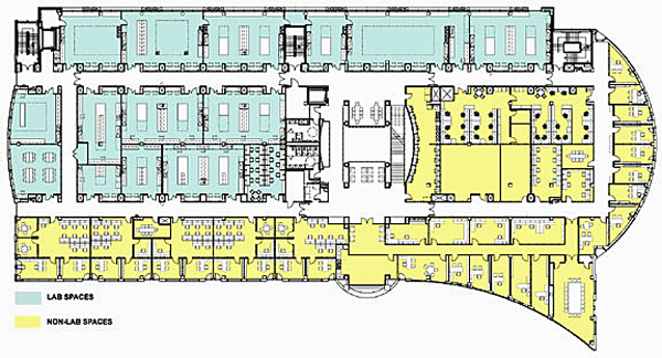 Floorplan of lab and office spaces featuring a racetrack corridor.