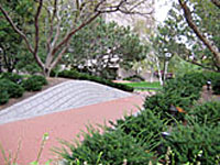 A wide sloping walkway with raised planted berms on each side