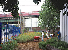 Learning Garden for P.S. 19, Queens, NY
