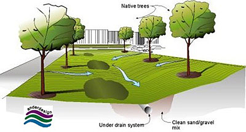 The Bio-swale schematic shows water running toward a low point between two rows of trees where underground, an under drain system surrounded by clean sand/gravel mix is contained.