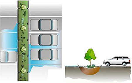 Bioretention cell schematic showing a parking lot with median containing trees.