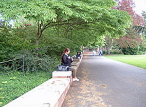 Girl reading on a bench in a park setting.
