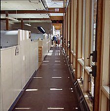 Office corridor with light streaming in from the windows.