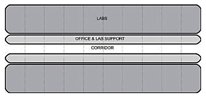 Diagram of a single corridor lab with labs and office adjacent to each other