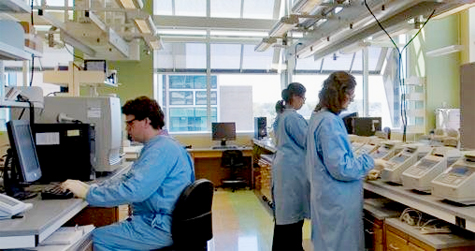 Researchers wearing prescribed PPE