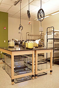 Project lab space includes movable furniture and utility connections that can be easily relocated