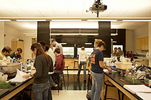 Students working at lab tables below glare-free indirect illumination