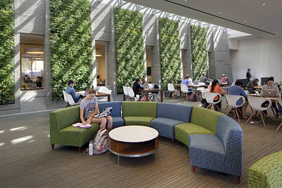 Healy Family Student Center at Georgetown University, girl on circular couch with living green wall panels in the background