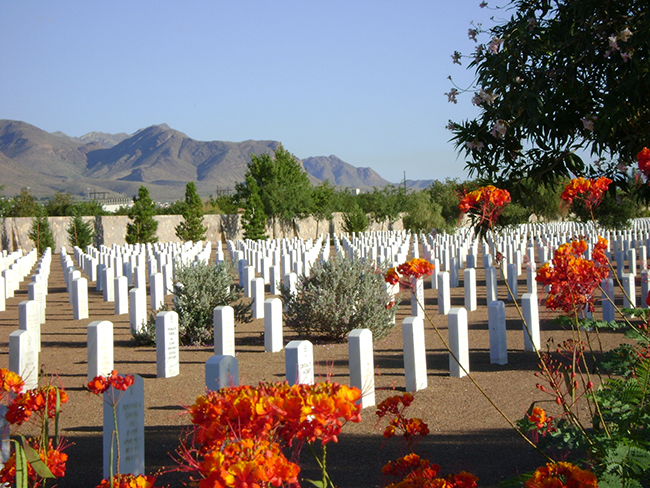 Fort Bliss National Cemetery has low-water landscape desig and view of mountains