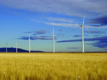 Photo of a field with a row of 5 wind turbines